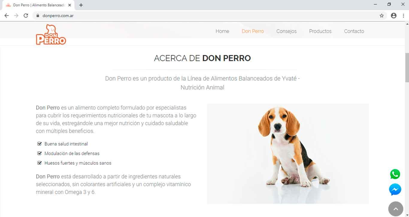 Don Perro